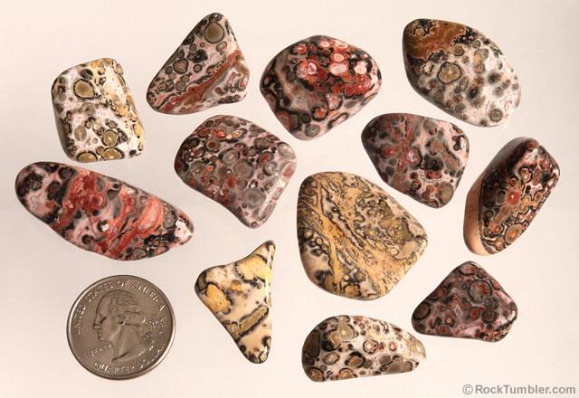 leopard skin tumbled stones