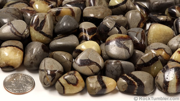 Septarian Stone
