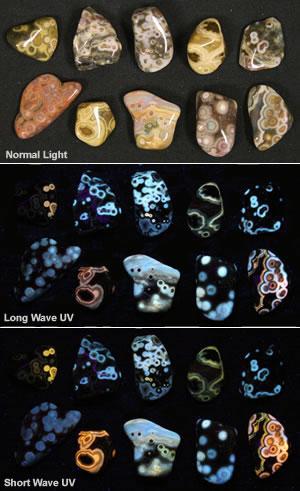 Fluorescent ocean jasper